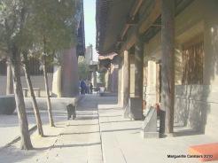 Shuanglin Temple Courtyard