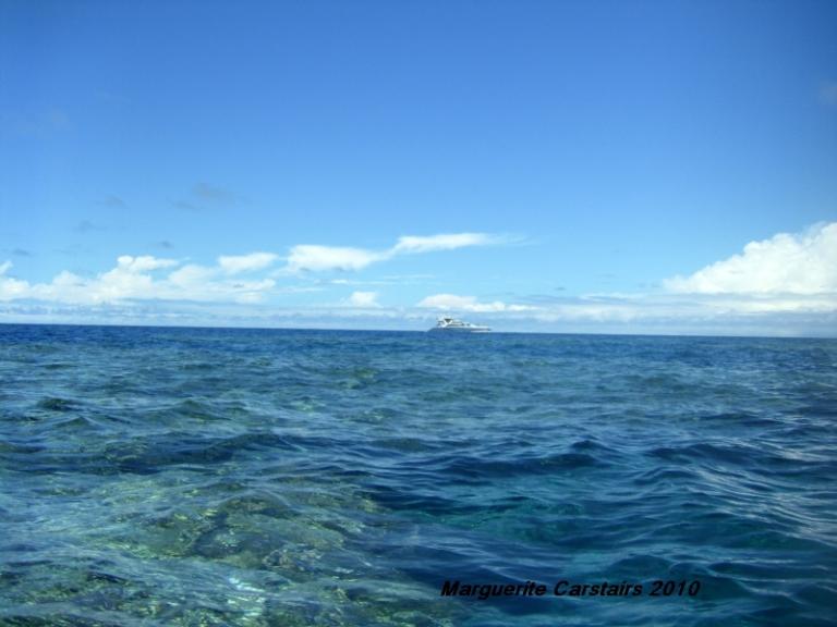 wheelers Reef