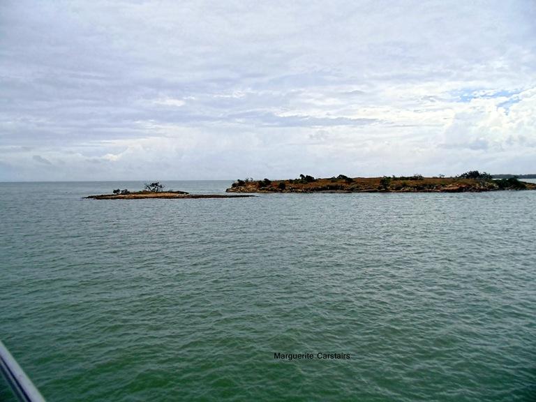 Islands near Curtis