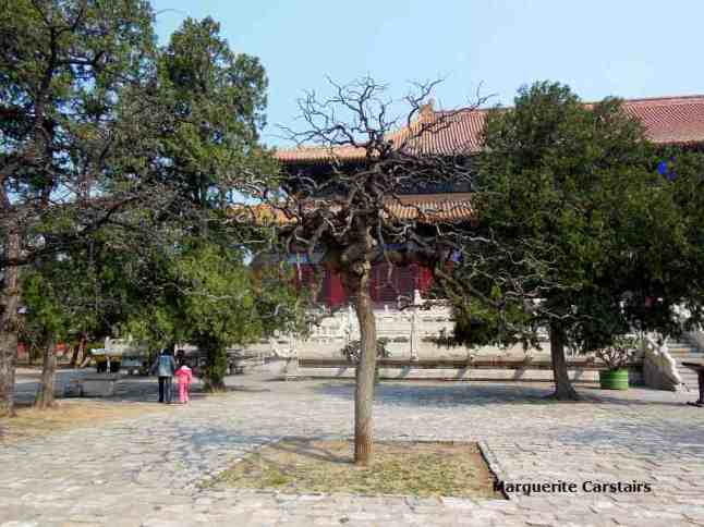 Trees with the Main Building behind at Ming Tomb