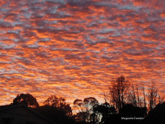 Sunrise Beauty 20 May
