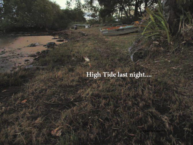 High Tide Line