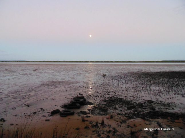 Low tide and setting Mon