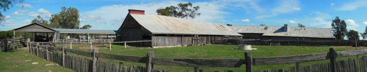 Surfers and Woolshed-001