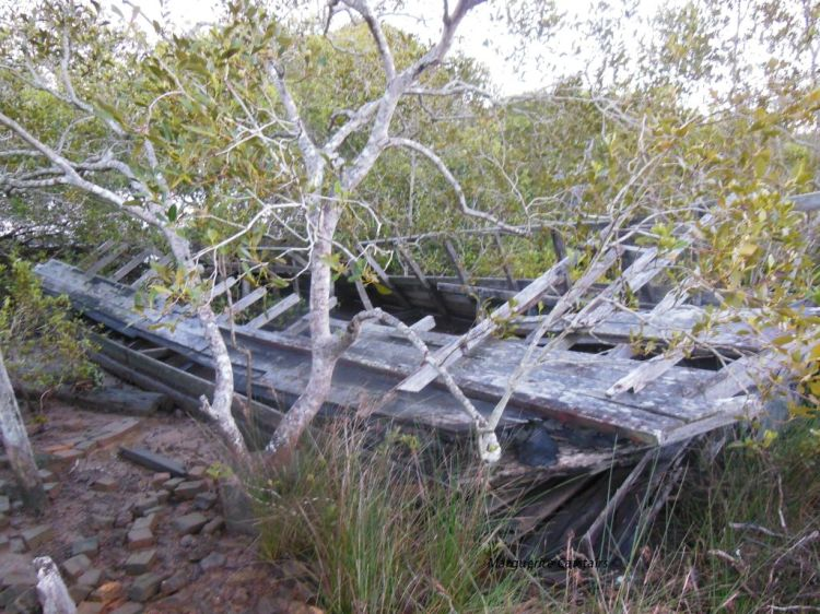 Wreck at Russell Island