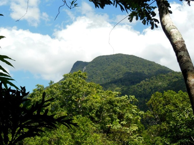Manjal Peak2