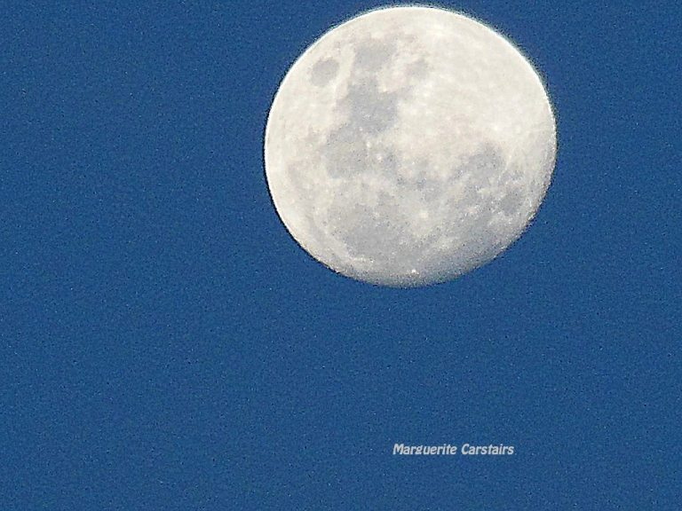 Moon 15 December