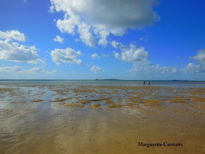 Walking the low tide