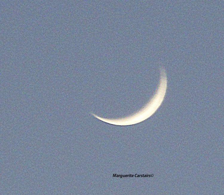 Moon 30 Jan