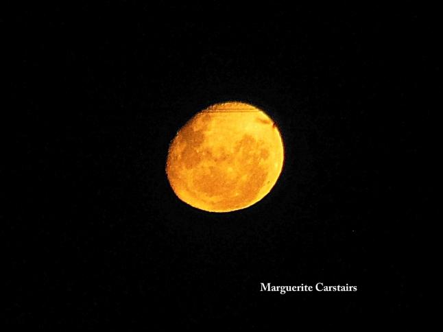 Moonrise 2