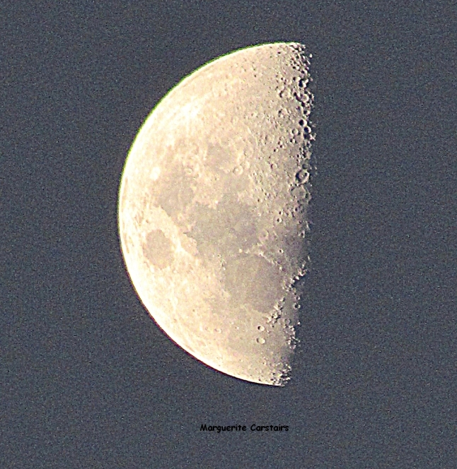 Half moon of 7 Feb