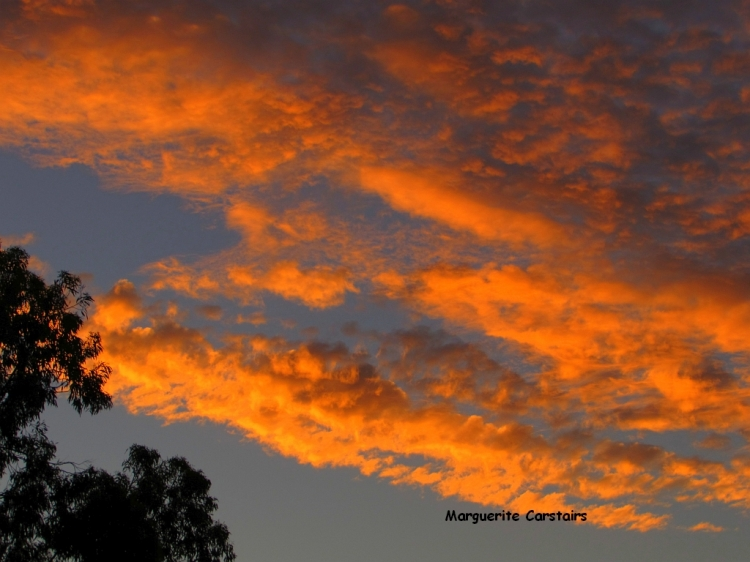 sunset 7 Feb 2014