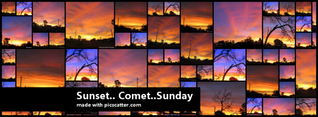 SundayCometpic_scatter_cover