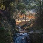 Weekend Wanderings – Walhalla