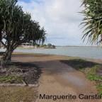 Morning Walk at Bribie Island  Kakadu Bird Sanctuary