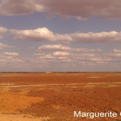 Birdsville Track