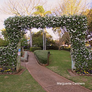 Rose Archway