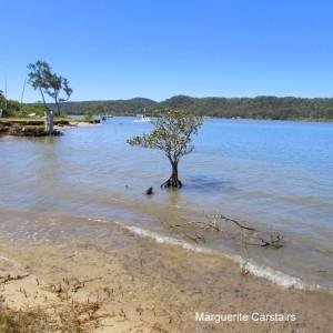 Low tide Sandy Beach