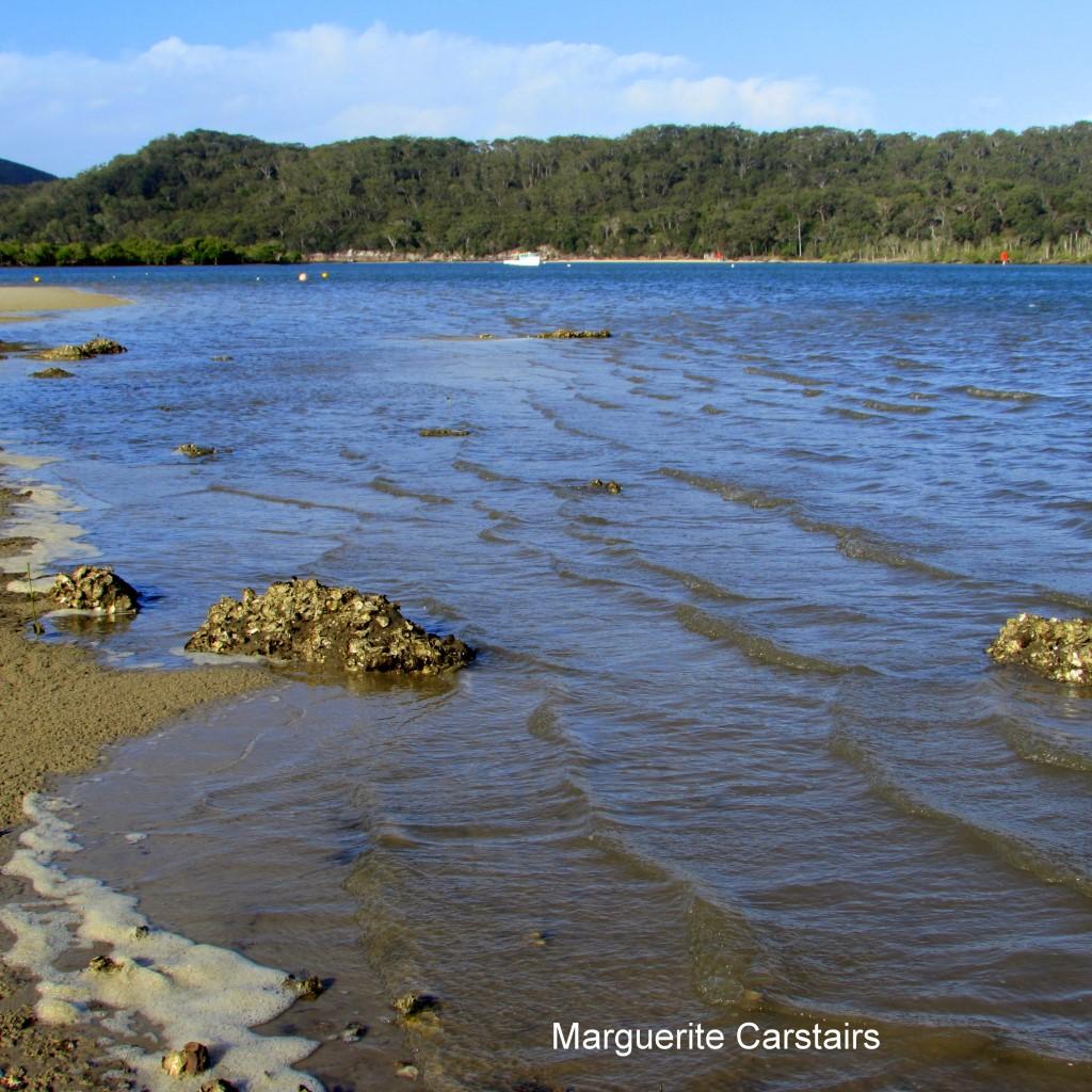 Sandy Beach: Low Tide Sandy Beach Russell Island