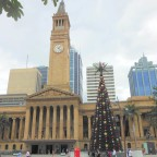 Brisbane Town Hall and the Christmas Tree