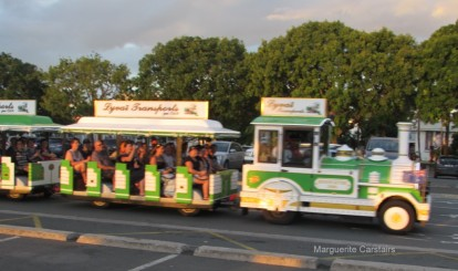 Tourist Train Noumea