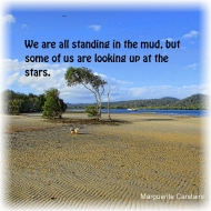 We are all standing in the mud, but some of us are looking up at the stars.