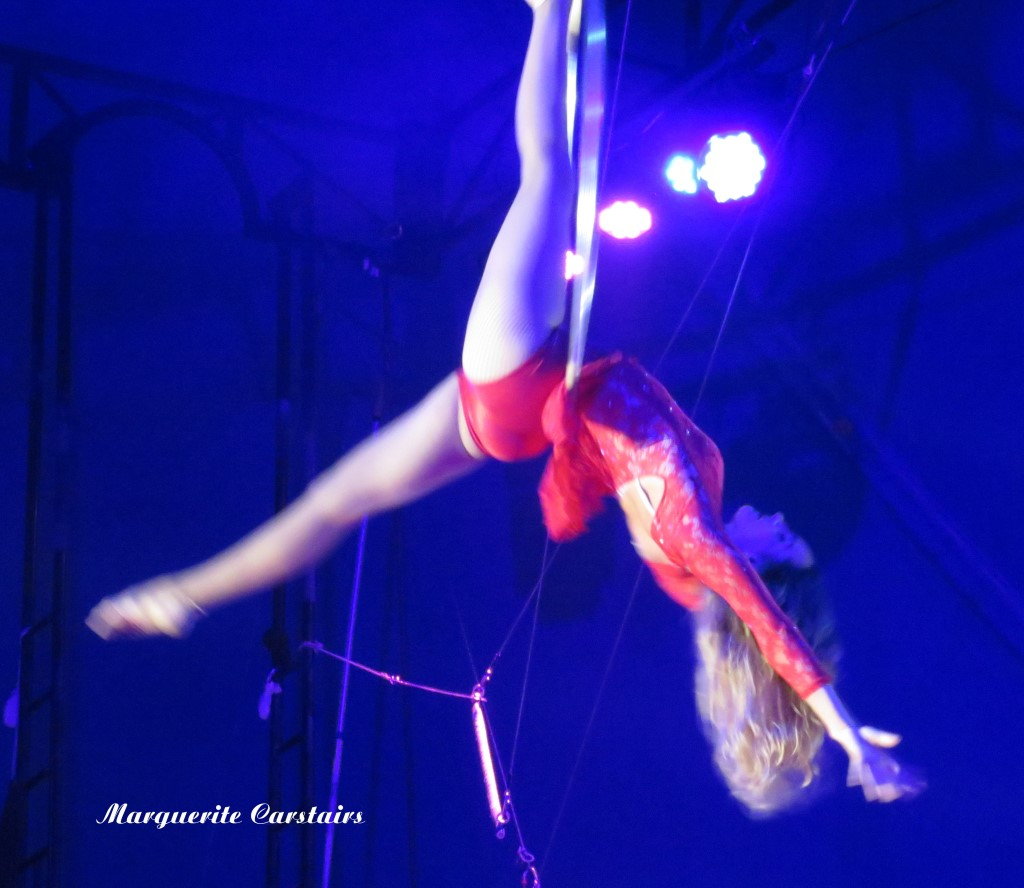 Circus Aerial Acrobat and High Flyer Lani