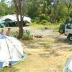 Whitsunday Camping